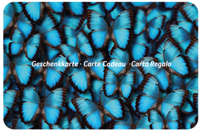 Design Schmetterling